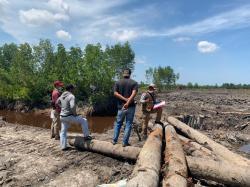 Diduga 33 Hektare Lahan Hutan Produksi Terbatas Dijual di Bengkalis