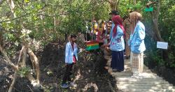 Telukpambang Jadi Tujuan Ekowisata Mangrove