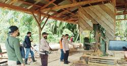 Polisi Kesulitan Ungkap Pemilik Sawmill di Pangkalan Indarung