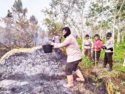 Sudah 360 Ha Lahan Terbakar di Riau