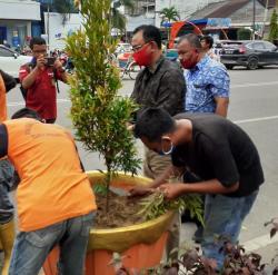 Bupati Rohil Tanam Pohon Pucuk Merah