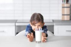 Susu Bukan Sumber Makanan Utama