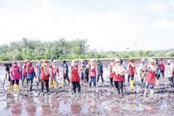 Tanam 600 Batang Mangrove di Pantai Raja Kecik
