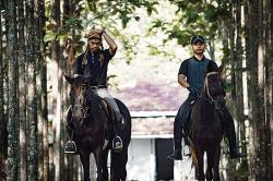 Wisata Berkuda di Tengah Kota
