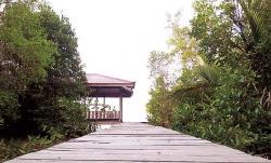 Potensi Wisata Pantai Beting dan Hutan Mangrove Tanjung Layang