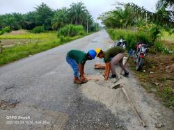 PT TKWL Perbaiki Jalan Lintas Bungaraya