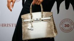 Hermès Himalaya Kelly Ini, Laku Terjual Rp6 M