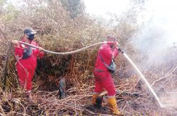 Lima Hektare Lahan Gambut Terbakar di Dumai