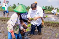 Airlangga: Pemerintah Alokasikan Klaster Dukungan UMKM Rp95,87 Triliun