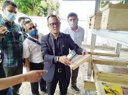 Bisnis Budidaya Lebah Madu Klanceng Menjanjikan