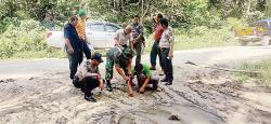 Keberadaan Harimau di Sorek II Hoaks