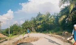 Jalan Lintas Tengah Rusak, Warga Tanam Pisang