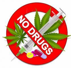 Bertahap, Bentuk 15 Kelurahan Bersih Narkoba