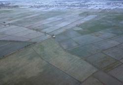 Kementan Hapus Anggaran 10 Ribu Hektare Cetak Sawah