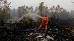 Riau Kembali Status Siaga Darurat Karhutla