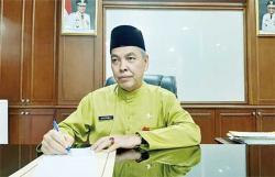 Realisasi Program Peremajaan Sawit Rakyat di Riau Minim