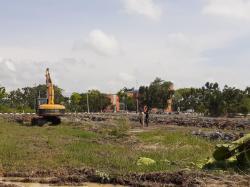 DKPP Maksimalkan Lahan, Wujudkan Taman Edukasi Buah dan Sayur