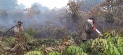 Pesisir Pulau Rangsang Terbakar