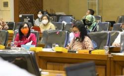 DPD RI: Mandatory Spending UMKM Penting dalam RUU Omnimbus Law Cipta Kerja
