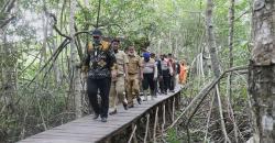 Bersama Lestarikan Hutan Mangrove
