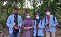 Mahasiswa Kukerta Unri Tanam Ratusan Bibit Pohon di Tuah Karya