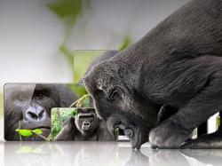 Gorilla Glass Baru Tahan Rusak dari Ketinggian 2 Meter