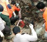 Dua Korban Tertimbun Longsor di Rokan IV Koto Berhasil Dievakuasi