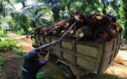 Ekspor Produk Riau Tak Boleh Terhenti Meskipun Pandemi