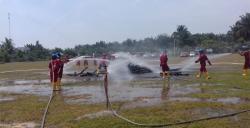 Sinergi Multipihak Minamas Plantation dalam Menghadapi Bahaya Karhutla