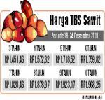 Harga TBS Sentuh Rp1.900 per Kilogram