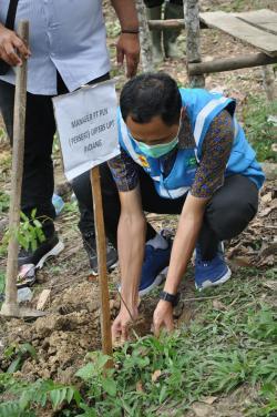 PLN Peduli Kembangkan Wisata Alam Batu Bapayuang di Sijunjung