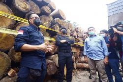 Gakkum KLHK dan Polda Riau Bongkar Illegal Logging di Rimbang Baling