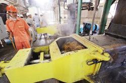 Kualitas SDM Dumai Tunjang Industri Kelapa Sawit