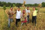 Lewat Program DMPA Sinarmas Forestry, Kelompok Anto Panen Padi 7 Ton