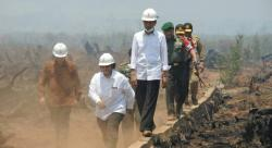Divonis Bersalah Kasus Karhutla, Menteri LHK: Justru Pak Jokowi Membenahi yang Salah-salah