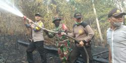 40 Hektare Kebun Sawit Terbakar