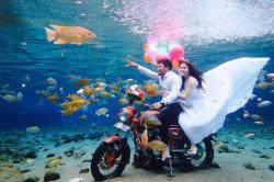 Hal Menarik Tentang Wisata Air di Umbul Ponggok