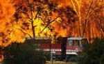 Indonesia Siap Bantu Tanggulangi Kebakaran Australia