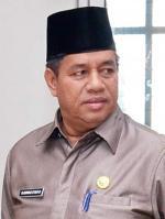 2020, Riau Dapat Jatah Replanting Kebun Sawit 24 Ribu Hektare