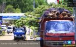 Ekspor CPO Indonesia Terkendala Hambatan di Eropa dan India