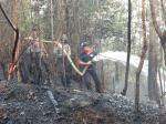 Warga Histeris, Kebakaran Terjadi Dekat Permukiman di Kampar