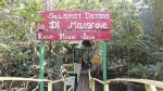 Hutan Mangrove Kampung Rawa Mekar Jaya Jadi Lokasi Wisata