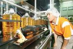 Industri Minyak Goreng Bisa Jadi Andalan