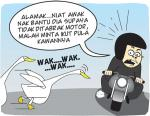 Dikejar Angsa